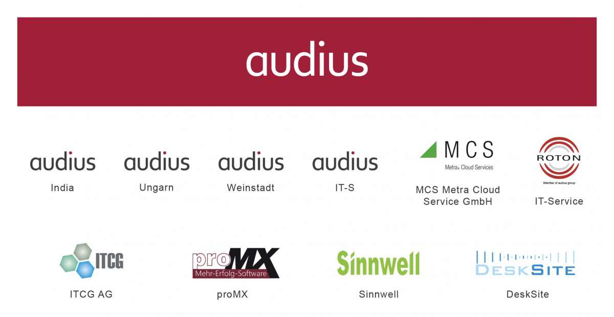 audius | Company Structure